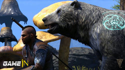 The Elder Scrolls Online: Morrowind - Warden gameplay trailer onthuld