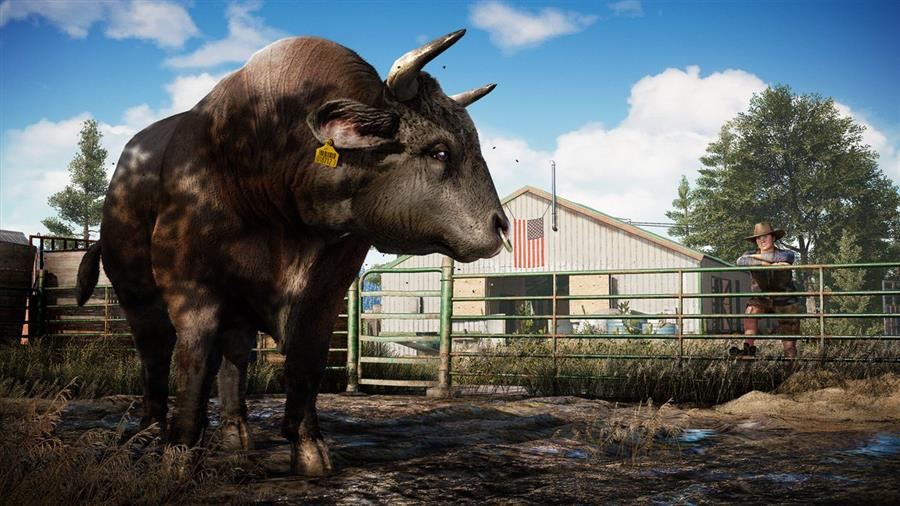 Far Cry 5 Playstation 4 Foto 3